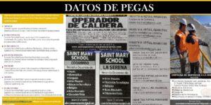 DATOS DE PEGAS| JUNIO 2020