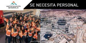 PUESTOS LABORALES PARA ANTOFAGASTA MINERALS (JULIO 2020)