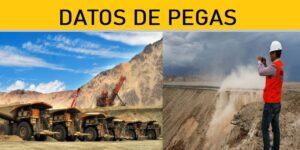 DATOS DE PEGAS | AGOSTO 2020