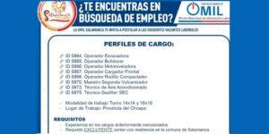 ¿Te encuentras en búsqueda de empleo? OFERTAS LABORALES OMIL Salamanca
