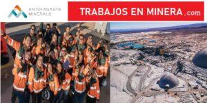 antofagasta minerals cl