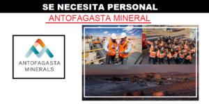 PUESTOS DE VACANTES PARA ANTOFAGASTA MINERALS